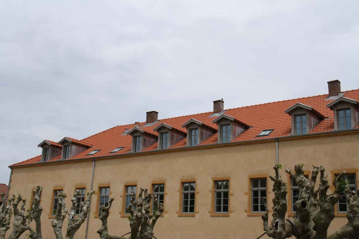 La toiture et les Jacobines du bâtiment Ressins